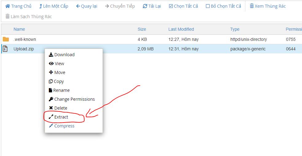 Gi ải nén file vừa upload lên thư mục gốc của hosting